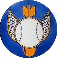 511th Squadron Patch